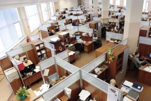 employees sitting at work